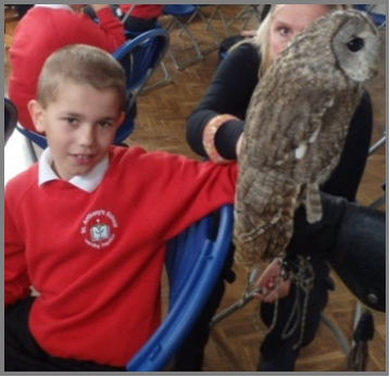Owls About Town Visit